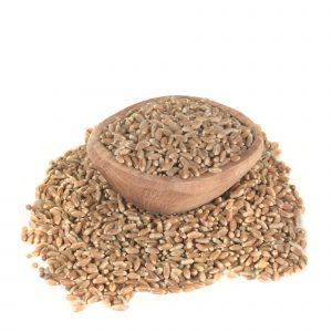 trigo en grano biodinámico 500 g