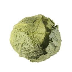 repollo verde orgánico 1 u