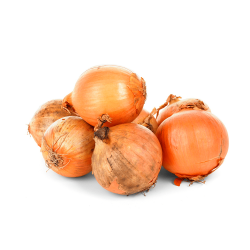 cebolla normal orgánica 1 kg