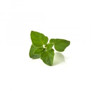 Orégano orgánico fresco 80 g