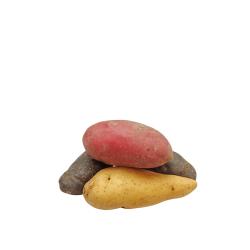 papas nativas moradas orgánicas 1 kg