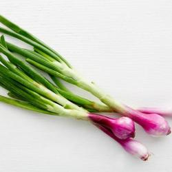 Cebollín morado orgánico 3 u